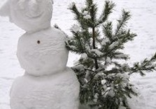 новый год снеговик елка