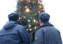 милиция елка