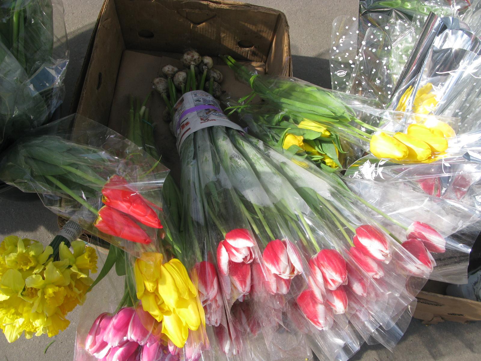 Цветы тюльпаны мимозы купить харьков оригинальный подарок мужчине скорпиону