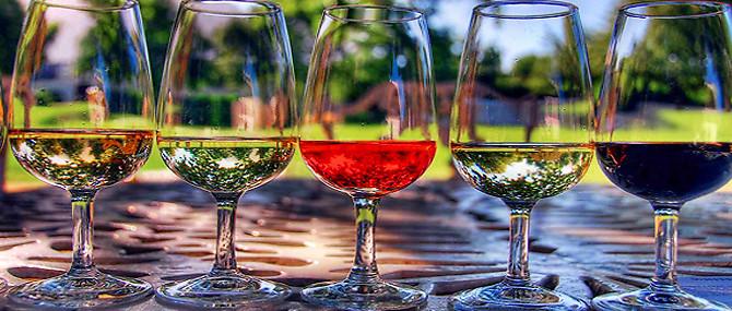 По всей Италии 26-27 мая прошел Фестиваль вина Cantine Aperte, в рамках которого можно было посетить винодельни и продегустировать в них вино.
