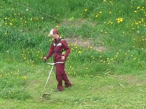 как выкосить траву возле дома клондайк