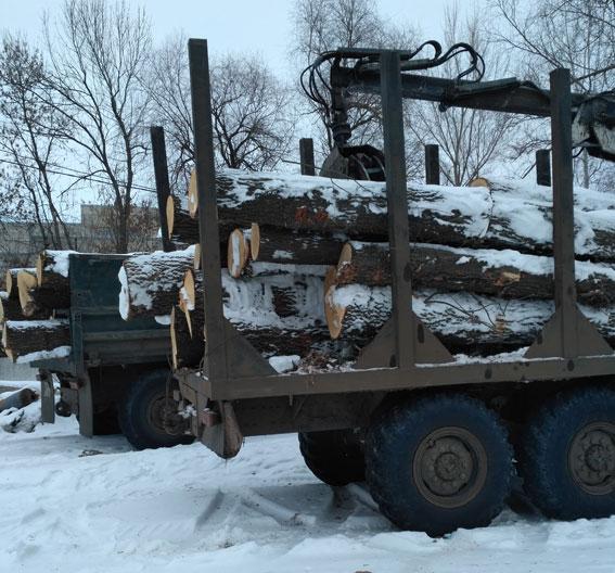 НаХарьковщине милиция задержала перевозчика с«КАМАЗом» елок