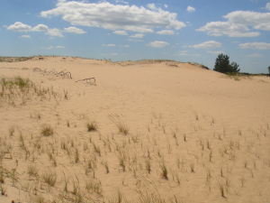Пески под Кицевкой