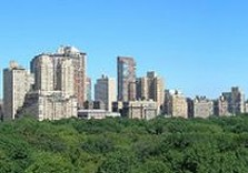 мусеев, манхэттен, центральный парк, лесопарк