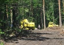строительство дороги в лесопарке