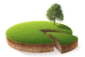 Либерализировать рынок земли планируется в середине 2020 года