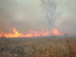 Возле Клугино-Башкировки до сих пор горят и тлеют отдельные участки военного полигона