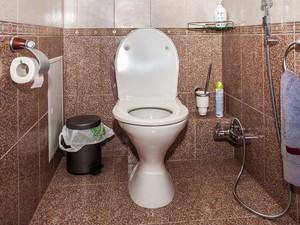 Автор предлагает сделать бесплатными туалеты для малоподвижных людей и ветеранов